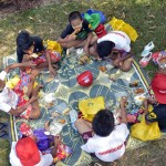 Day of Fun Picnic